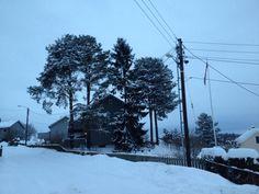Trefeller oppdrag på Strømmen Snow, Outdoor, Outdoors, Outdoor Games, Outdoor Living, Bud, Let It Snow