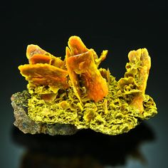 Orange WULFENITE cluster on MATRIX Urumqi, Xinjiang Uygur, CHINA #PM6-8