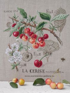 what it looks like completed Cross Stitch Fruit, Cross Stitch Kitchen, Cross Stitch Flowers, Cross Stitch Kits, Counted Cross Stitch Patterns, Cross Stitch Charts, Cross Stitch Designs, Vintage Cross Stitches, Diy Embroidery