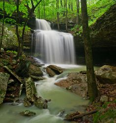 Phipps Branch Falls, Ozark National Forest Arkansas - Photo by Tim Ernst