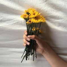 รูปภาพ flowers, yellow, and aesthetic