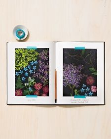 Gardening Journal Tip | Martha Stewart