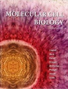 Molecular Cell Biology Edition by Lodish Berk Kaiser Krieger Bretscher Ploegh Amon and Scott test bank - Home Testbanks and Solutions Biology Test, Biology Textbook, Cell Biology, Molecular Biology, Science Biology, Science Books, Biology Online, Amon, Cell Cycle