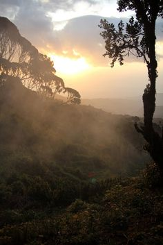 Sunrise, Rwenzori Mountains National Park, Uganda