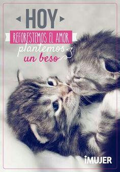 Plantemos un beso
