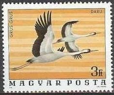 Birds on stamps: Hungary Hongarije Hongrie Hungria Postage Stamp Design, Vintage Stamps, Stamp Collecting, Crane, Birds, Gallery, Hobbies, Europe, Hungary