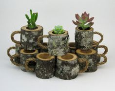 House Warming Gift Planter Hanging Planter Indoor Rustic Hanging Succulent Planter Log Planter Cactus Succulent Holder Gifts for Her 12 Rustic Wedding Succulent Log Planters Centerpiece Woodland Wedding Outdoor Wedding Decor Natural Wedding Coffee Mugs Succulent Centerpieces, Rustic Centerpieces, Succulent Terrarium, Succulent Favors, Succulent Ideas, Wedding Centerpieces, Succulent Care, Shower Centerpieces, Centerpiece Ideas