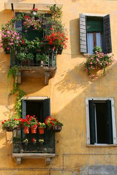 Window Glamour - Venice, Italy. LOVE!! Wish we were going when more will be in abundant blooms. ✈✈✈ Here is your chance to win a Free Roundtrip Ticket to Milan, Italy from anywhere in the world **GIVEAWAY** ✈✈✈ https://thedecisionmoment.com/free-roundtrip-tickets-to-europe-italy-venice/