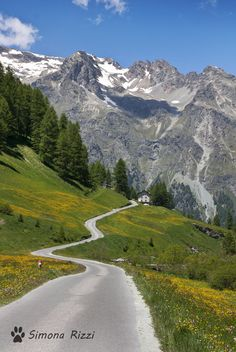 Val di Fex (Engadina, Switzerland/Svizzera) by Simona Rizzi
