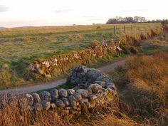 The Well of the Dead, Culloden Moor The commander of the Clan Chattan regiment, Alasdair MacGillivray of Dunmaglass, and many other Jacobite soldiers died here after engaging the left wing of the Hanoverian army.