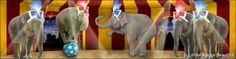 Backdrops: Circus  9 Elephant