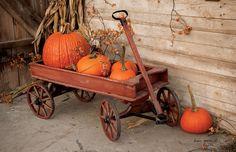New Primitive Rustic Pumpkin Wagon Fall Thanksgiving Floor Mat Area Rug USA #Country