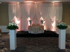 Backdrop with acrylic pedestals kildeer il