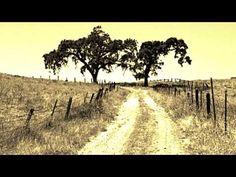 Billie Holiday - Strange Fruit (Commodore Recording) 1939 - YouTube