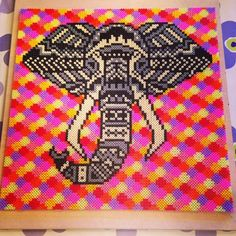 Tribal elephant perler art by belindafk