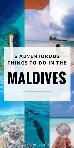 The Maldives isn't just for all inclusive honeymoon resorts! Check out these 6 adventurous things to do in the Maldives.