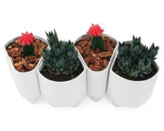 CERAMIC MODULAR PLANTER | Modern Stoneware Flower Pot, Indoor Garden Supplies | UncommonGoods