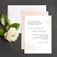 Vintage feather wedding invitation in blush pink