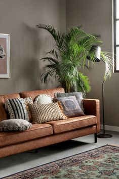 Modern Living Room Colors, Living Room Styles, Boho Living Room, Living Room Storage, Paint Colors For Living Room, Living Room Grey, Home And Living, Living Room Designs, Living Room Decor