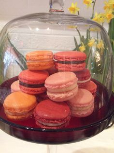 cgMACARON at Two Peas in a Pod!Barnes, London SW13