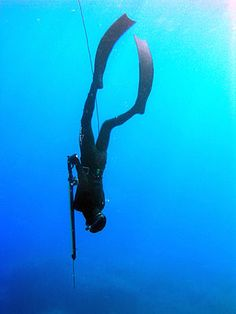 Free diving and open water spear fishing. Bc I need to kill something ASAP. Bass Fishing Shirts, Kayak Fishing, Trout Fishing, Spear Fishing, Deep Photos, Skin Diver, Diving Helmet, Fishing Videos, Fishing Girls