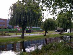 Stafford Town Park