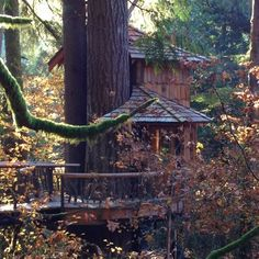 Treehouse - Yahoo Image Search Results