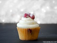 Move over cranberry sauce! Cranberry Orange Cupcakes topped with candied cranberries. Cranberry Dessert, Cranberry Sauce, Cranberry Orange Cake, Köstliche Desserts, Delicious Desserts, Mini Cakes, Cupcake Cakes, Cupcake Piping, Cupcake Recipes
