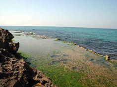 שמורת טבע חוף דור הבונים: טיול ים מרתק