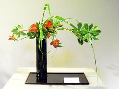 Ikebana - Free Style (mass,point,line and surface)