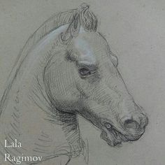 Lala Ragimov, drawing of the Medici Riccardi horse from Museo Aecheologico Nazionale Firenze that was on show  Animal drawing sketch sketchbook horsey bronze sculpture drawing cast museum