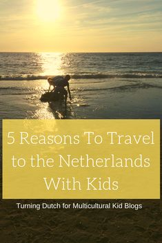 The Netherlands is a small country but very child-friendly. Here are 5 great reasons to make a visit to the Netherlands with Kids for your next holiday. Amazing Destinations, Travel Destinations, Travel Europe, Travel With Kids, Family Travel, Beach Cafe, Travel Deals, Travel Tips, Water Management
