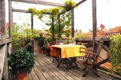 A modest altana (roof garden) atop a studio apartment in Venice.