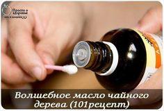 Волшебное масло чайного дерева (101рецепт)  ГОЛОВА * ОЧИЩЕНИЕ ВОЛОС И...