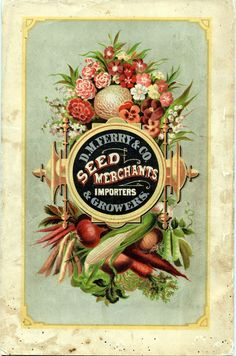antique seed packages - Yahoo Canada Image Search Results