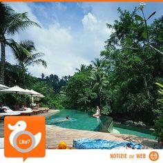 BISOGNO DI FERIE??  Ecco un bel resort dove rilassarsi... qui i 400 Dollari circa a notte sono sicuramente ben spesi... ad averli però!!!  http://www.fancy.com/things/334529712283983555/Four-Seasons-Resort-Bali-%40-Sayan
