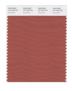 PANTONE SMART 18-1112X Color Swatch Card, Walnut - Amazon.com