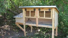 """Image 174 of 425 in forum thread """"Show me you quail pens!!!"""""""
