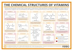Vitamins are an important part of our diet, but you probably haven't given a great deal of thought to their chemical structures. This graphic shows chemical structures for all 13 vitamins; though t...