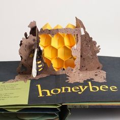 Honey Bee by Shawn Sheehy