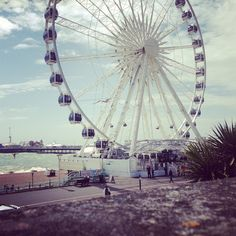 fifimcgee: Tip-off Tuesday: 10 cheap things to do in Brighton Brighton Uk, Cheap Things To Do, Best Careers, I Want To Travel, England Uk, Days Out, Where To Go, Cool Pictures, Places To Visit
