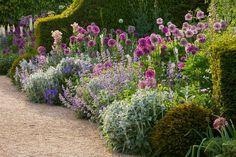 Maestría inglesa en un borde de herbáceas - Guia de jardin. Blog de jardinería y plantas. Aprende a cuidar tu jardín.
