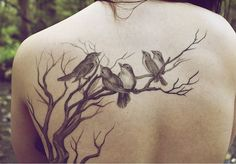 Uncolored birds sitting on tree branches tattoo on upper back