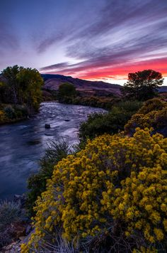 Truckee River @ Reno, Nevada. (Man, we have the best sunsets in the West)...
