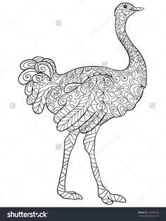 Find This Pin And More On Coloring Kangaroo Ostrich By Barbara
