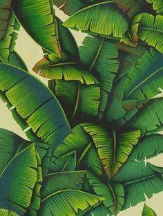 Où trouver les plus beaux papiers peints à motifs de feuilles et de palmes ?