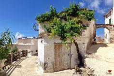La parra y el arco de Polopos | Publicaciones I Love Alpujarra