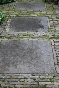 stone or concrete slab with bricks laid around it without morter to allow for mosses Muster