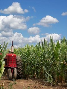 Heart Of America by Maria Dryfhout- This so reminds me of my younger days    my Grandaddy s tractor in the field. 0a03e8aa48c6