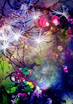 digital photocollage.      titel:sternenzauber #art #kunst #abstract #abstractart  #modern #fantasie #surreal #photography #collage  #photocollage #photoart #creativity  #pflanzen #plants #painting Photography Collage, Photocollage, Digital Art, Creativity, Wallpapers, Abstract, Modern, Plants, Painting